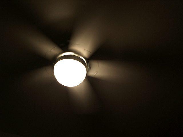 Reverse Ceiling Fan Rotation