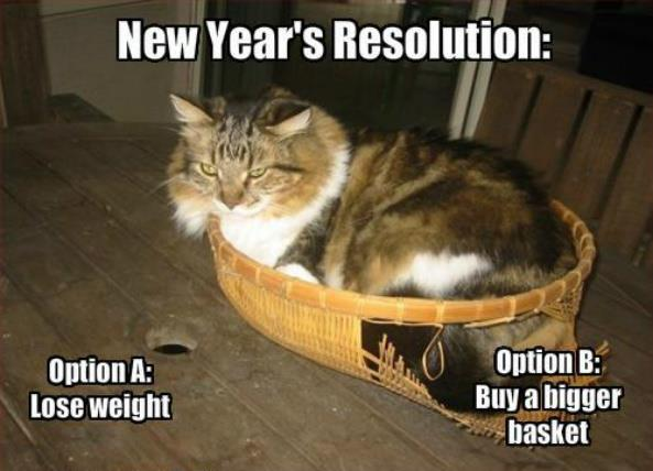 New Year's Resolution Meme Cats