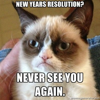 New Year's Resolution Memes Grumpy Cat