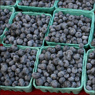 College Skin Care Blueberries