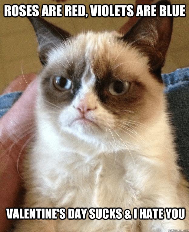 Grumpy Valentine's Day Memes
