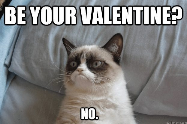 11 Grumpy Cat Anti Valentine S Day Memes Surviving College