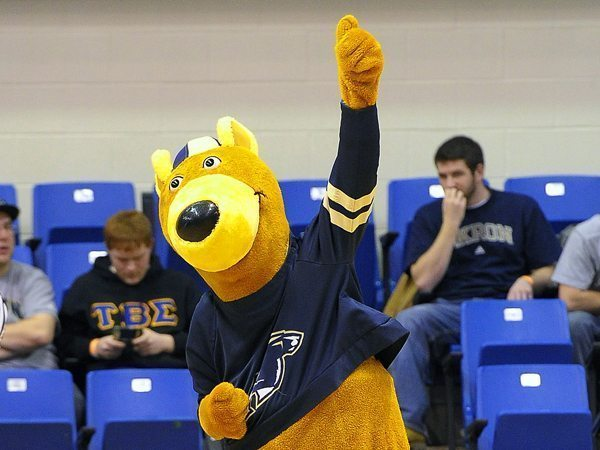 University of Akron Zips - Zippy Kangaroo