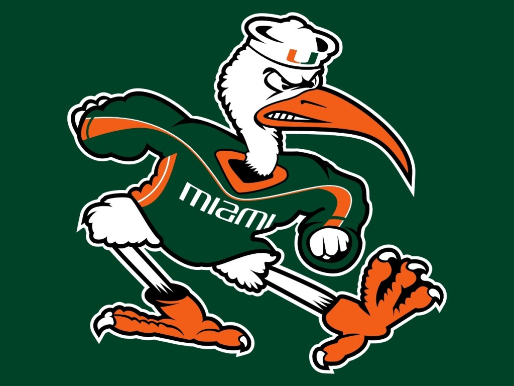 University of Miami Hurricans Sebastian the Ibis Logo