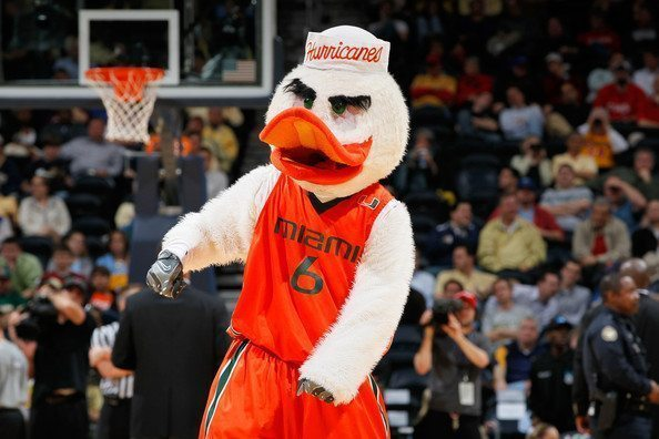 University of Miami Hurricans Sebastian the Ibis Mascot