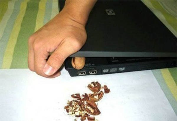 wtf college life laptop nuts