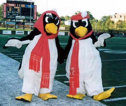 Pete and Penny Penguin Youngstown State University