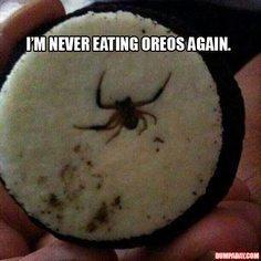 Spider In Oreo Cookies Gross Food