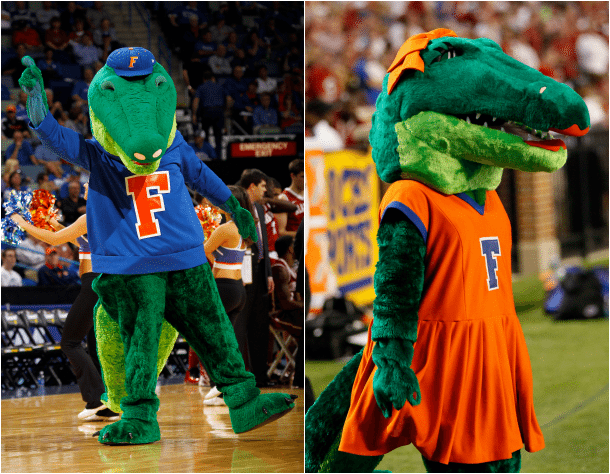 Albert and Alberta Gator Florida Gators University of Florida Mascot
