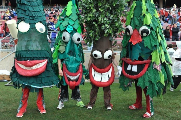 Stanford Tree Mascot Monday