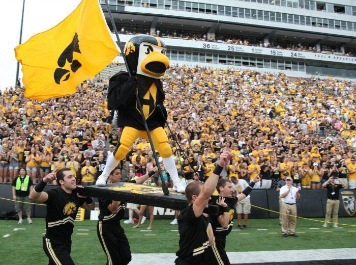 University of Iowa Hawkeyes Mascot Herky Mascot Monday