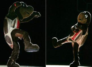 Maryland Terrapins Mascot Monday Mascot Dancing