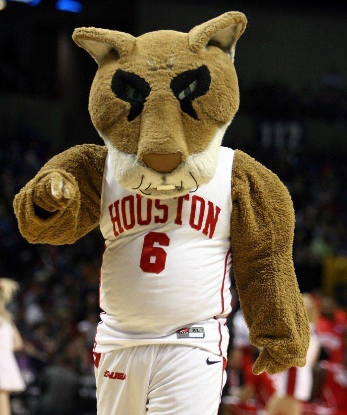 University of Houston Cougars - Mascot Monday - Shasta 2