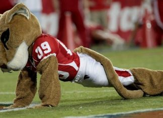 University of Houston Cougars - Mascot Monday - Shasta