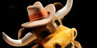University of Texas Longhorns - Bevo - Mascot Monday