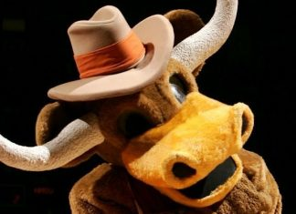 University of Texas Longhorns - Bevo - Mascot Monday
