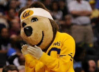 UC Berkeley Golden Bears - Cal Bears - Mascot Monday - Oski