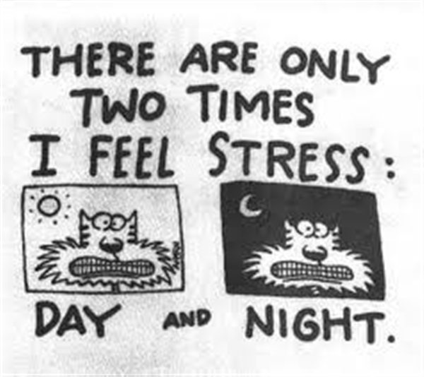 two times i feel stress day and night
