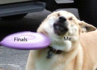 finals gifs